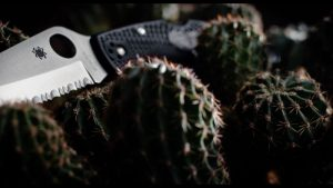 serrated edge blade